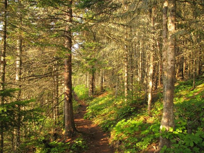 1) Isle Royale National Park