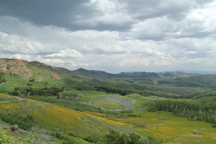 8. Jarbidge Wilderness - Elko County