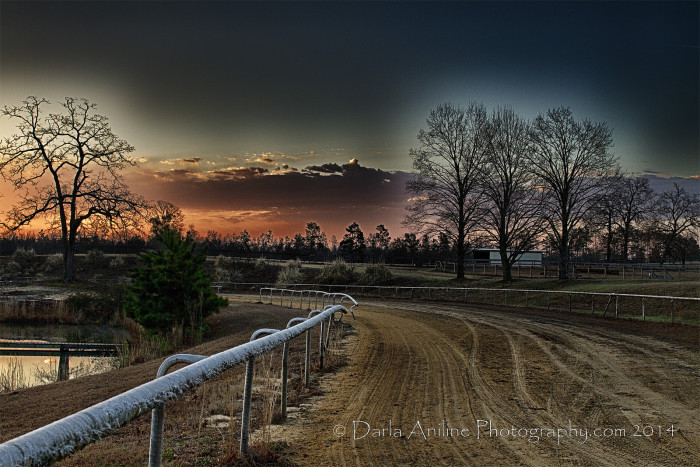 5. This is Sandy Hills Farm in Aiken, SC at sunrise and sunset respectively. The best parts of the day.