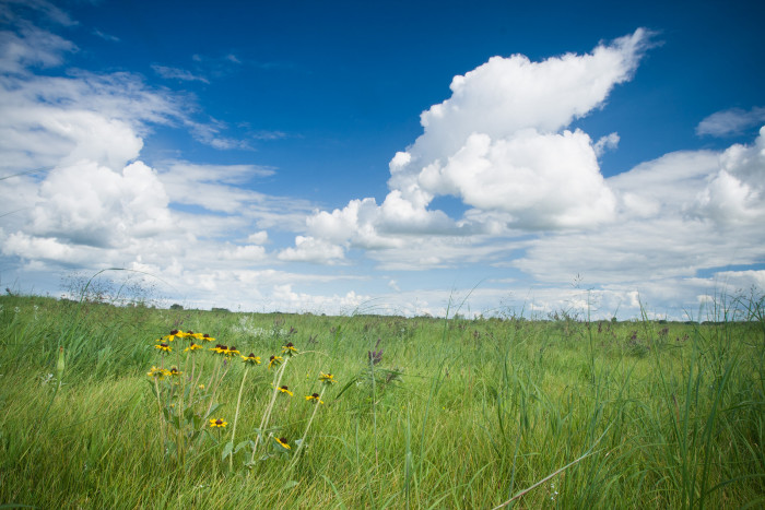 4. What a LOVELY view of a prairie spread across the Great Plains in North Dakota! I could relax here ALL DAY!