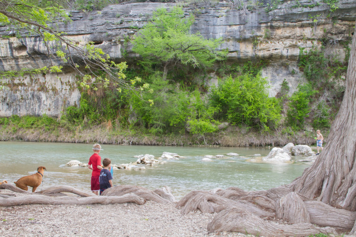 2) Guadalupe River State Park