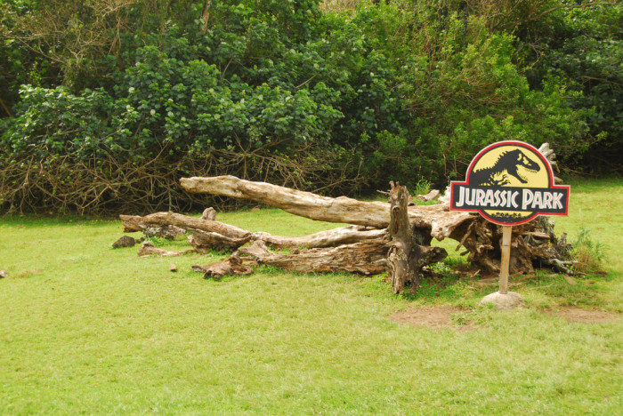 14-16) Jurassic Park, Jurassic Park III and Jurassic World: I know that this isn't a surprise to anyone, but it would be wrong to write a list of movies filmed in Hawaii without including the Jurassic Park franchise. Come on, there's even a movie tour on Oahu that shows you where they actually filmed the first movie.