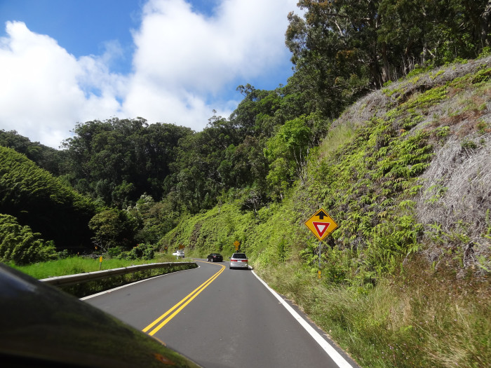 """14) Maui's famous """"Road to Hana"""" on the island's North Shore is narrow, 55 miles long, and features 617 curves and 26 bridges."""