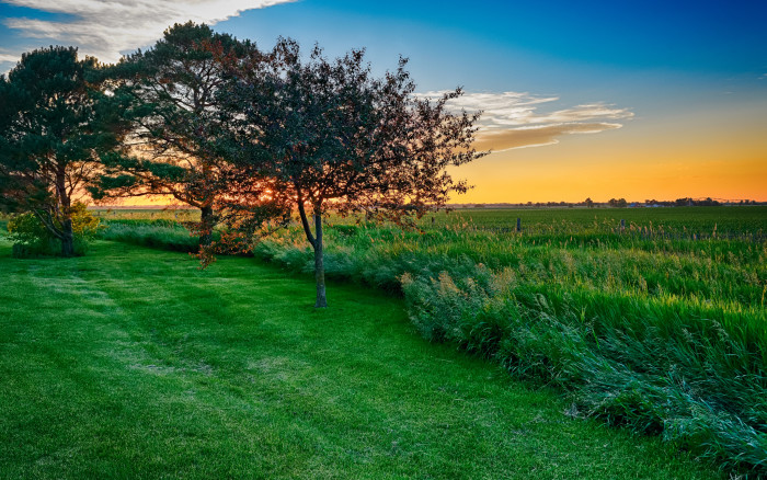 The Stunning Green of the Grass and the Orange and Blue Sky are Just Amazing