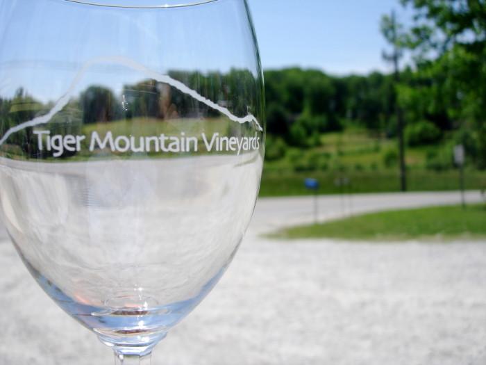 2) Tiger Mountain Winery - Tiger, GA