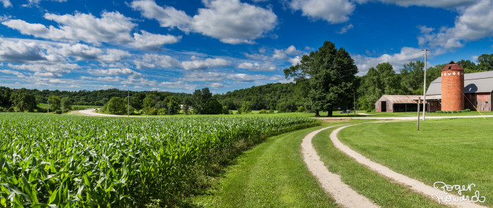 2. The Blakeslee Farm outside of Spring Valley, MN looks luscious and bright.