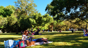 The 12 Best Places In Texas To Go On An Unforgettable Picnic