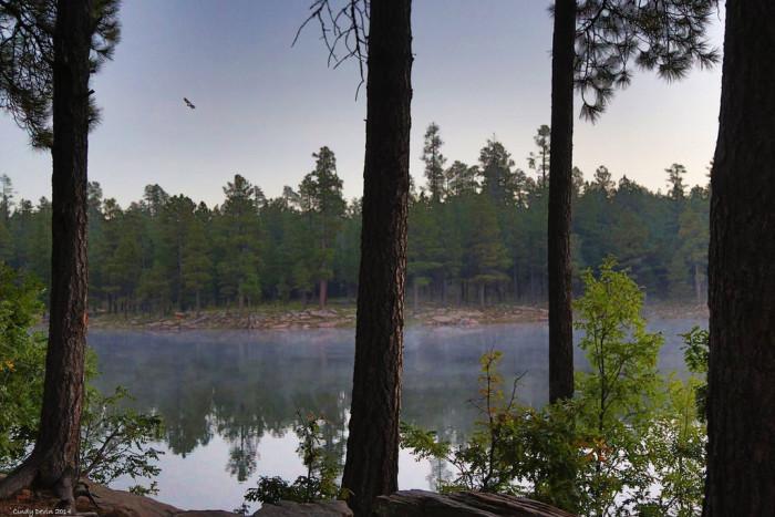 10. Woods Canyon Lake