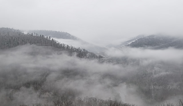 12. Loyalsock Canyon is blanketed in white mist.