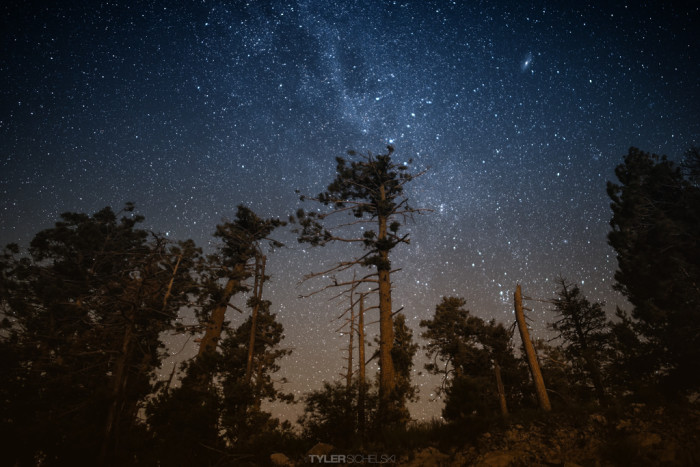12. Stargaze any night of the week