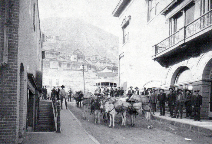 3. Would you want to attempt to cross the state with just a burro as your transportation? (c. 1910)