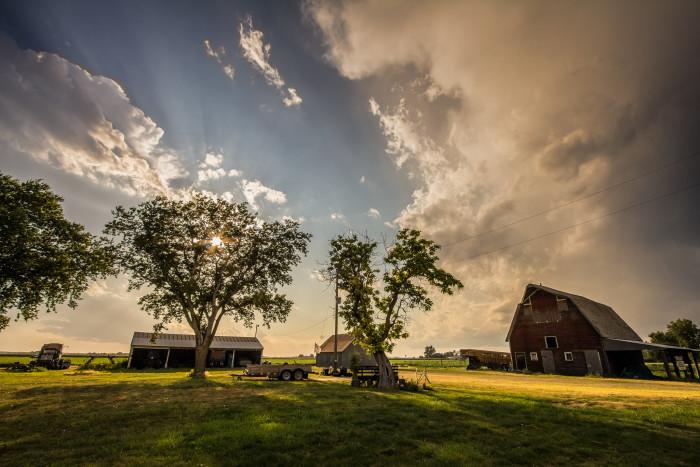 A Waterloo Farm Just After a Rainstorm