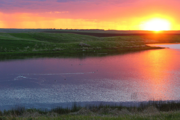 2. This colorful view of the Hochhalter Waterfowl Production Area in Logan County, North Dakota is MESMERIZING!