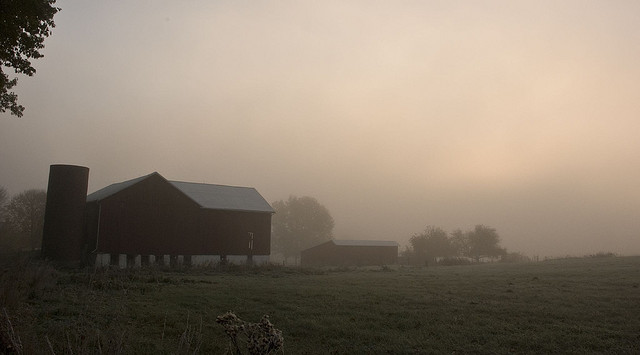 3. The mist obscures a quaint barn.