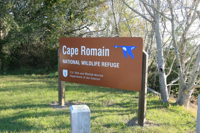 5. Cape Romain National Wildlife Refuge, Awendaw, SC