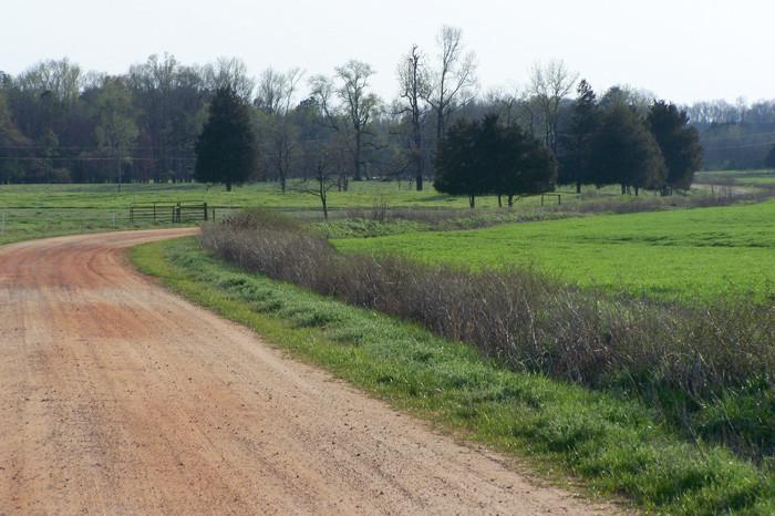 4) Farmland