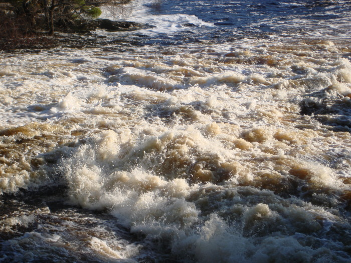 8. The BWCA is also abundant with beautiful and remote falls like Lower Basswood Falls.