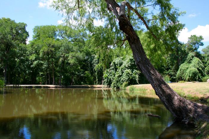 8) Palmetto State Park
