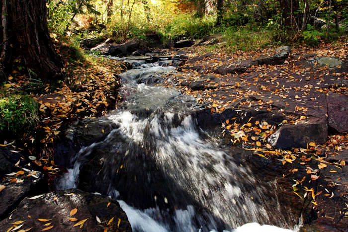 1. The falls along Tischer Creek in Congdon Park are absolutely stunning and rarely crowded..