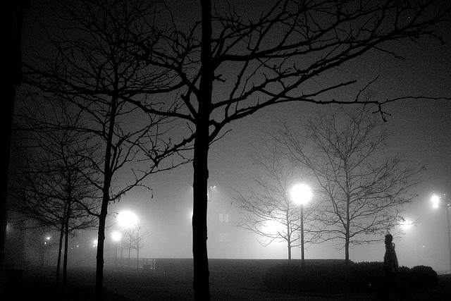 7. Lampposts glow like otherworldly orbs in this monochromatic shot.