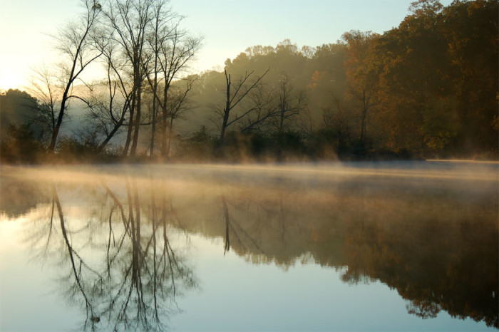 17) A misty morning in North Point, Roswell, Georgia.