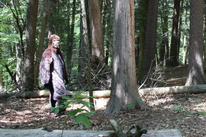 2. Bigfoot Sightings inOttosen