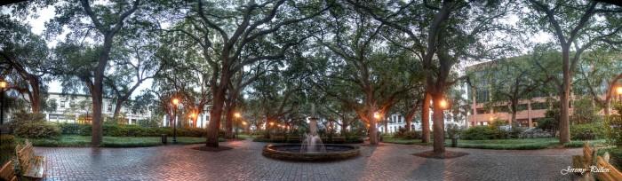 14) Savannah