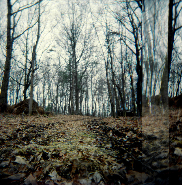 4. Suspicious trail