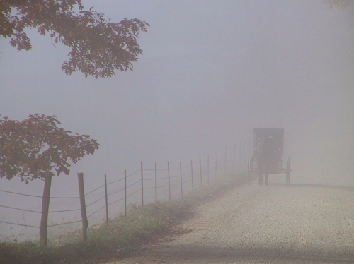 14. You can barely see the horse and buggy approaching in this photograph.