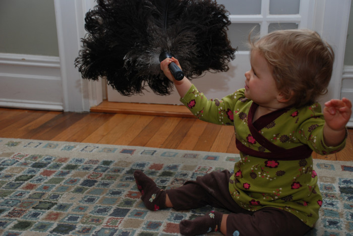 7) It's illegal to dust any public building with a feather duster in Clarendon.