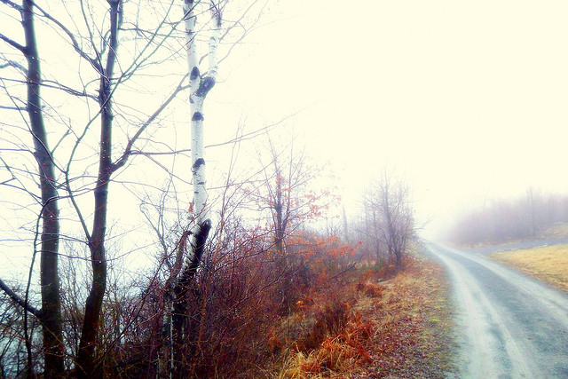 2. Though you may not be able to recognize this location due to the fog, this road leads to Peck's Pond in Pike County.