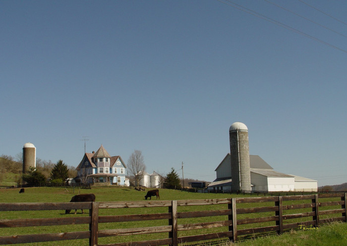11) Unknown farmstead (Beverly/Stockport, St. Rt. 266)