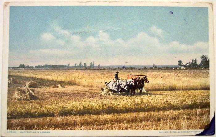 5.) Kansas Wheat Harvest