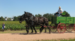 These 5 Must-Visit Places In Kansas Amish Country Will Give You A New Appreciation