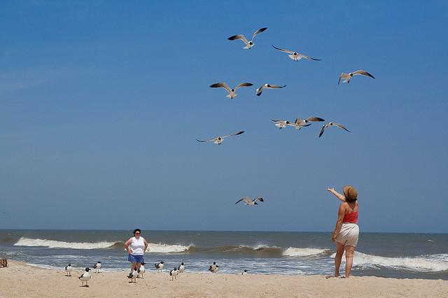 3. Kure Beach