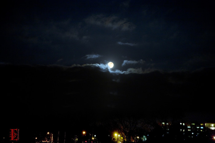 """8.) """"There are nights when the wolves are silent and only the moon howls."""""""