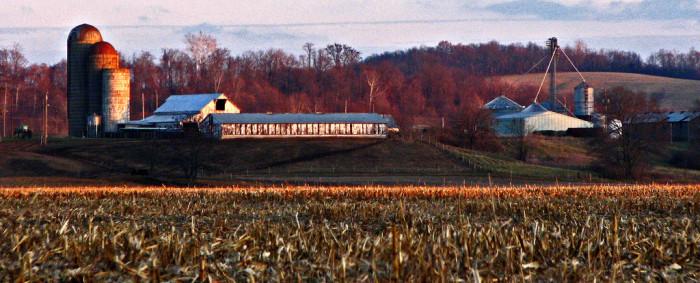 8) Pike County Farm (Piketon)