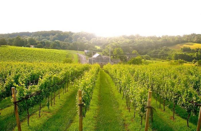 6. Berks County Wine Trail