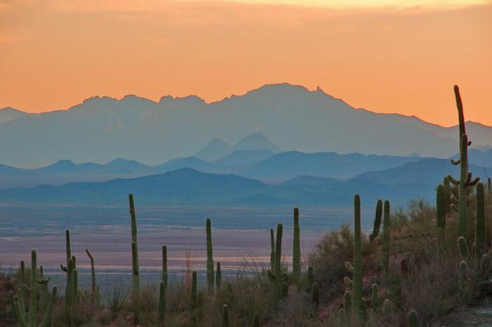 9. Saguaro National Park