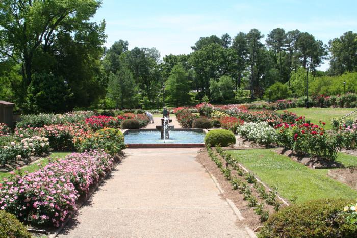 13) Tyler Rose Gardens