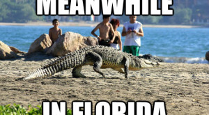 Here Are 9 Jokes About People In Florida That Are Actually Funny