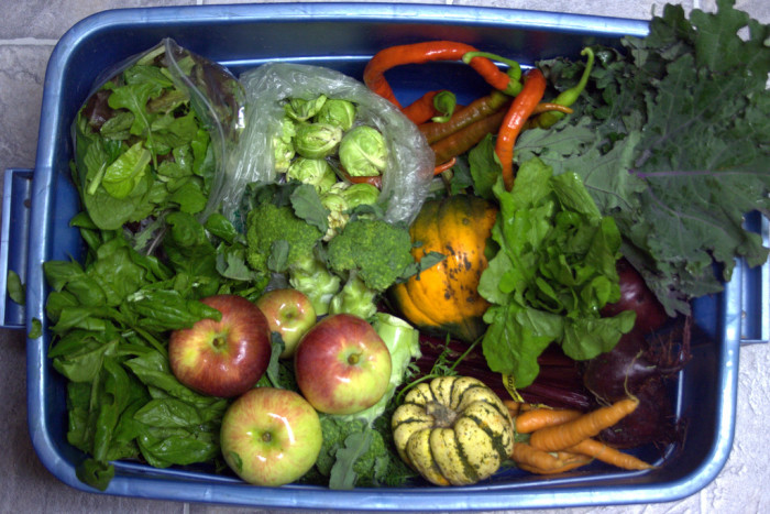 11. Fresh, farm picked fruits and vegetables are a must have for you on a weekly basis.