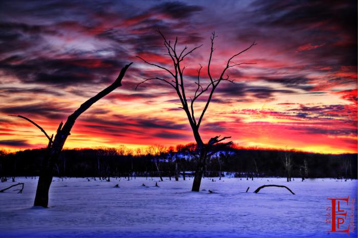 7.) Walking in a winter wonderland