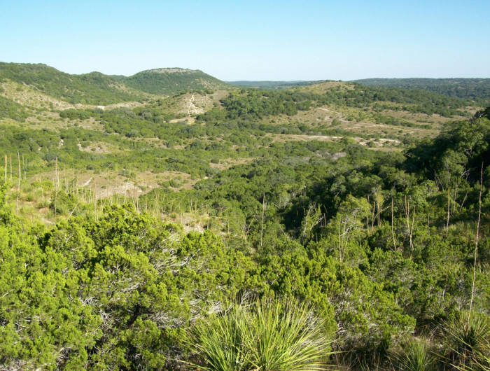 12) Hill Country State Natural Area (Bandera)