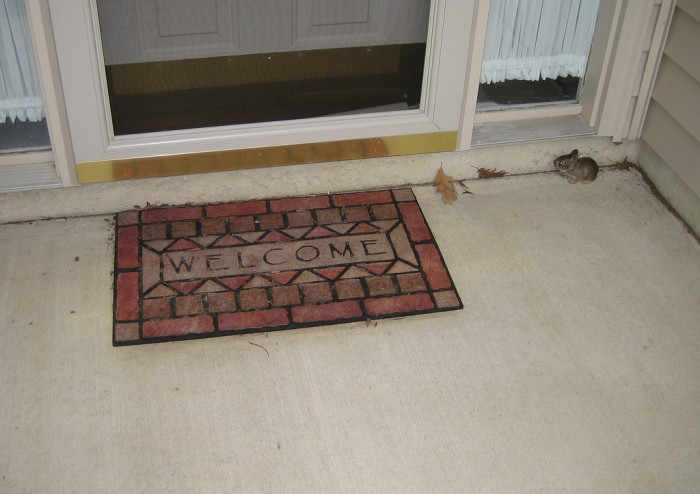 12) A welcome mat—because we're friendly people and we really do want you to feel welcome here in our weather crazy, lovely state.