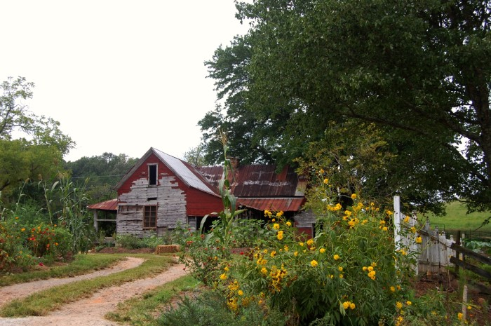 13) Loganberry Heritage Farm in White County, GA