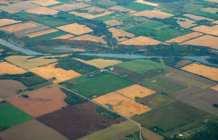 12) Agricultural plots somewhere in Oregon
