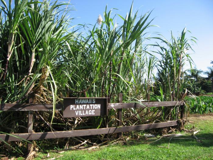5) Hawaii Plantation Village, Oahu