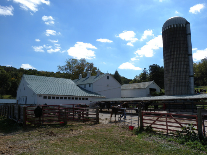 7) Malabar Farm (Mansfield)
