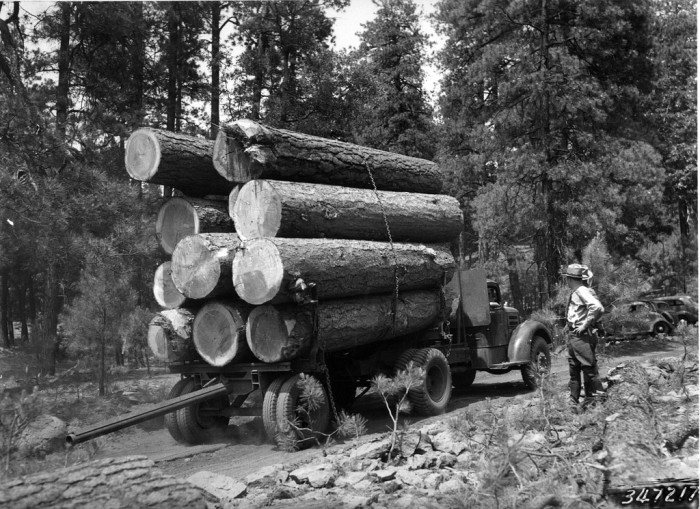 11.The logging industry has been a prolific industry in Arizona, especially in Flagstaff. (c. 1937)